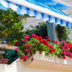 Как да си направим градина на балкона?